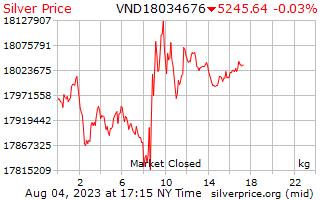 1 日シルバー ベトナム洞で 1 キロ当たり価格